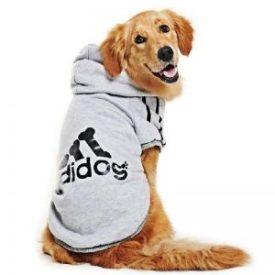 Comprar Abrigos y ropa para perros